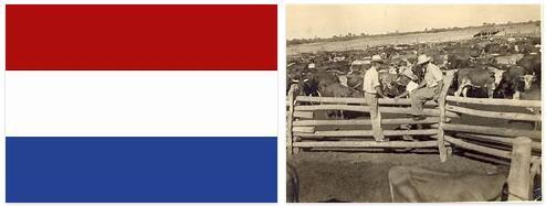 Paraguay History Timeline